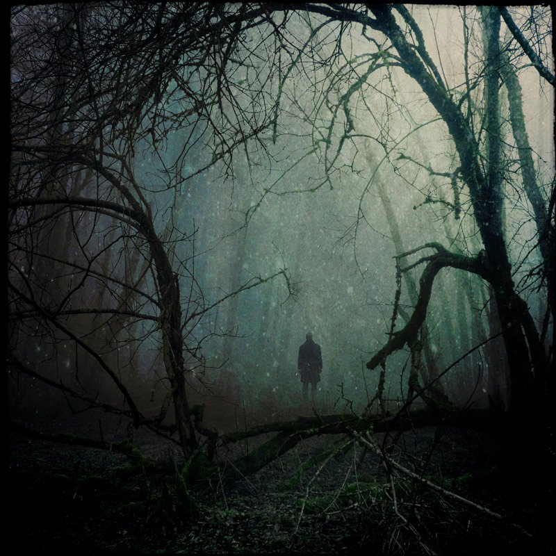 tone of an essay on man